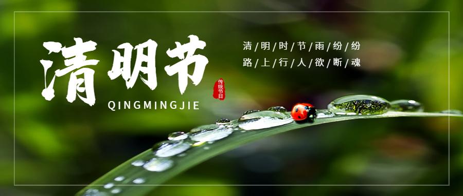 简约清明节众号封面首图1.png